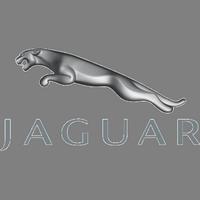 Чип тюнинг Jaguar в Омске